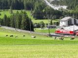 2018-Swiss-110