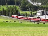 2018-Swiss-111